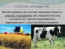 Сільське господарство Високо розвинутою галуззю економіки області єсільське ...