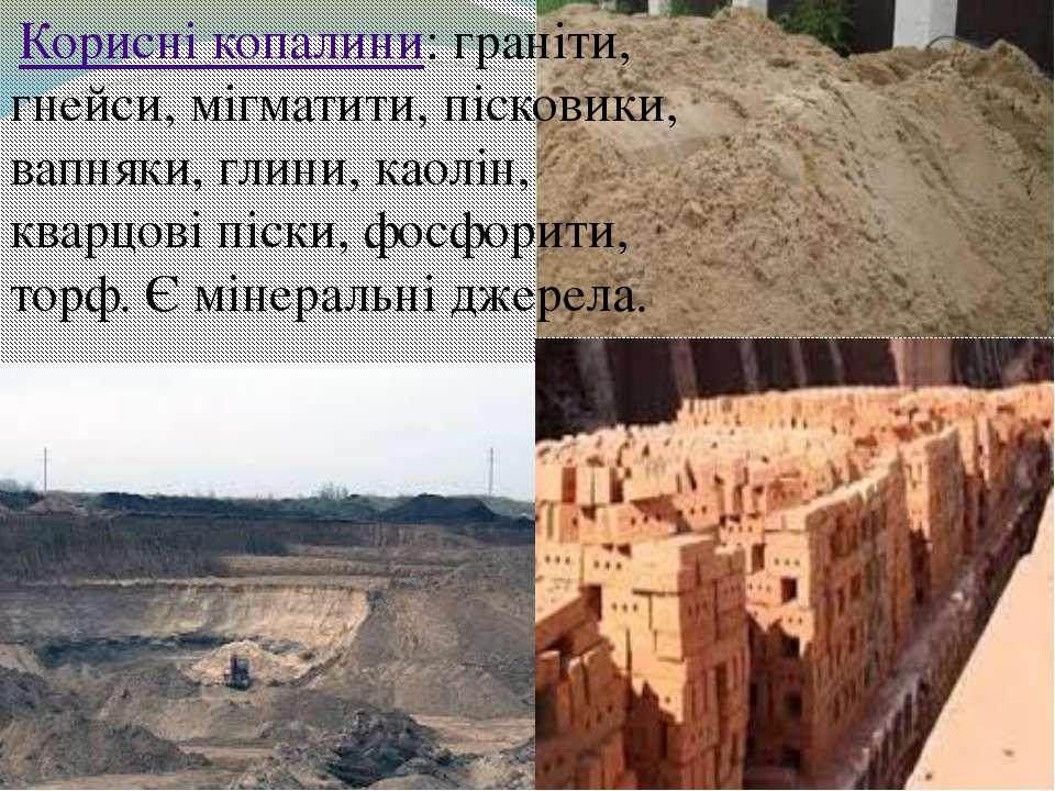 Корисні копалини: граніти, гнейси, мігматити, пісковики, вапняки, глини, као...
