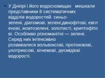 У Дніпрі і його водосховищах  мешкали представники 8 систематичних відділів...