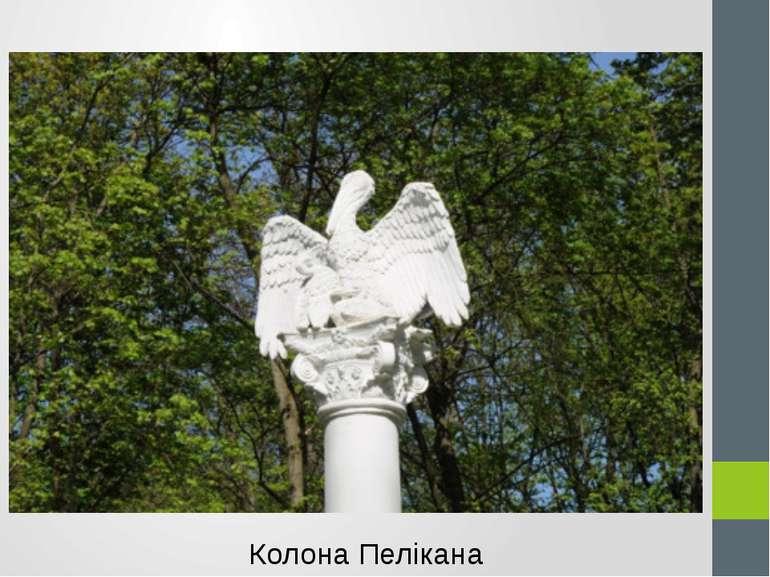Колона Пелікана