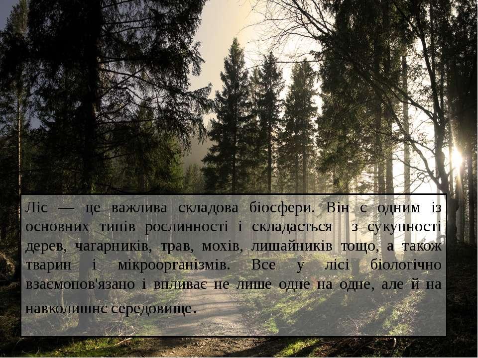 Ліс — це важлива складова біосфери. Він є одним із основних типів рослинності...