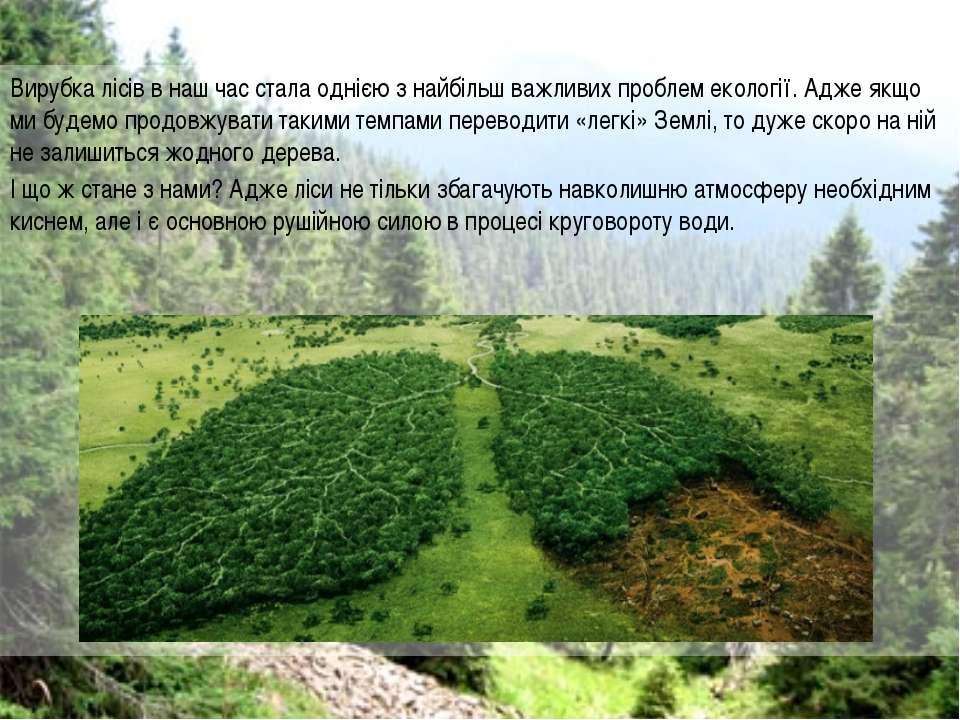 Вирубка лісів в наш час стала однією з найбільш важливих проблем екології. Ад...