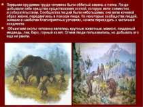 Первыми орудиями труда человека были оббитый камень и палка. Люди добывали се...