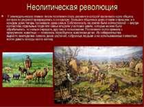 Неолитическая революция У земледельческих племен типом поселения сталадерев...