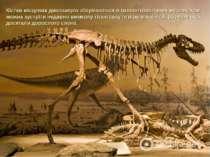Кістки місцевих динозаврів зберігаються в палеонтологічних музеях, там можна ...