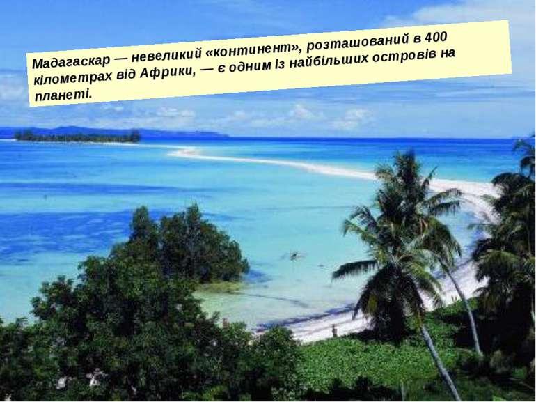 Мадагаскар — невеликий «континент», розташований в 400 кілометрах від Африки,...