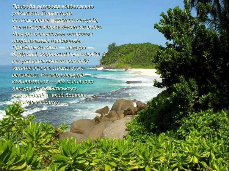 Природа острова Мадагаскар унікальна. Тільки тут розташоване царство лемурів,...