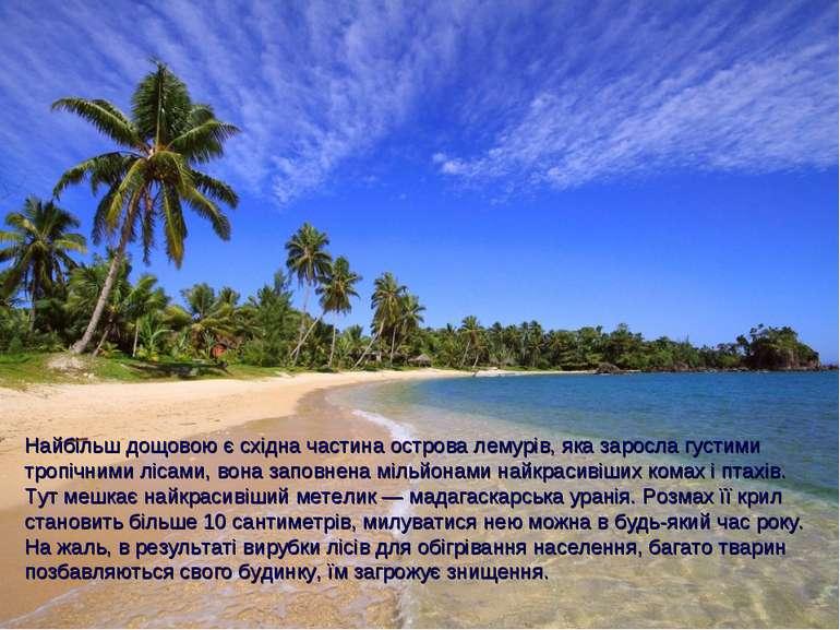 Найбільш дощовою є східна частина острова лемурів, яка заросла густими тропіч...