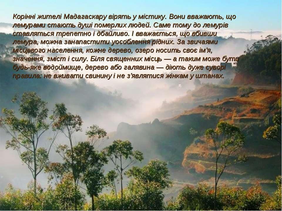 Корінні жителі Мадагаскару вірять у містику. Вони вважають, що лемурами стают...