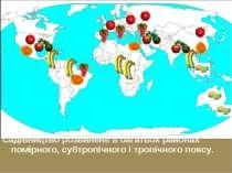 Садівництво розвинене в багатьох районах помірного, субтропічного і тропічног...