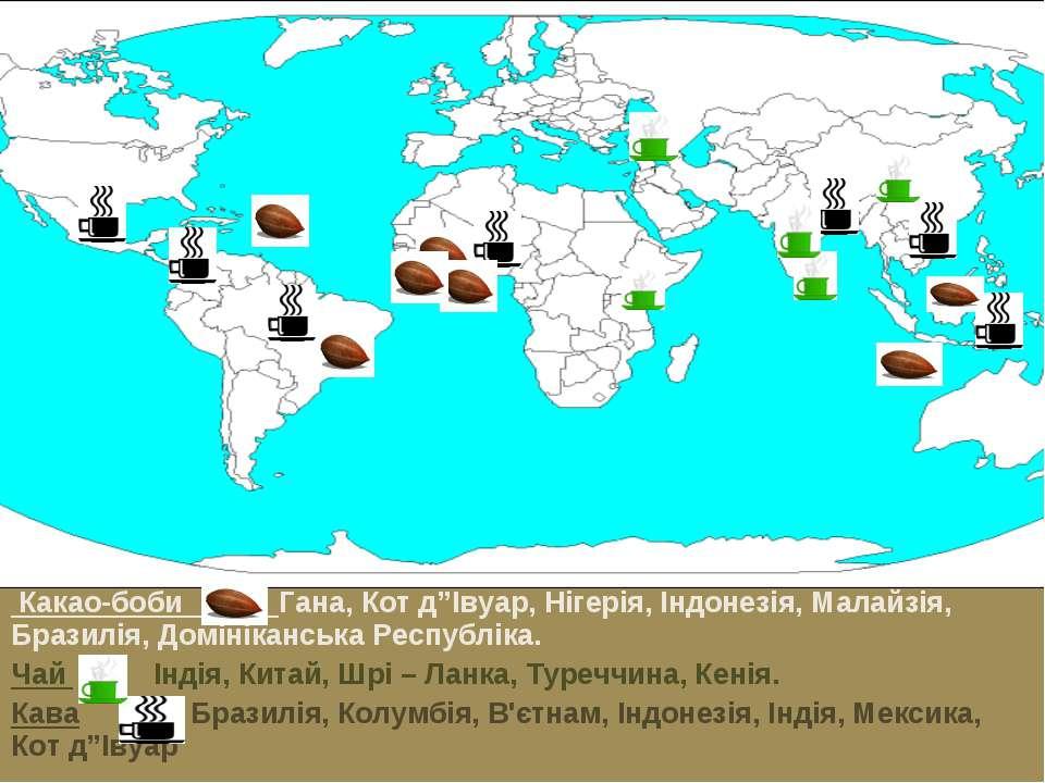 """Какао-боби Гана, Кот д""""Івуар, Нігерія, Індонезія, Малайзія, Бразилія, Домінік..."""