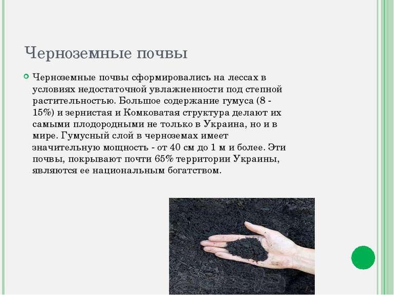 Черноземные почвы Черноземные почвы сформировались на лессах в условиях недос...