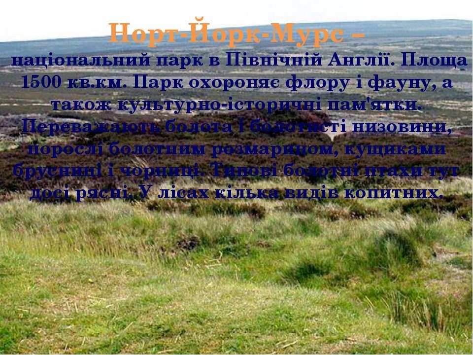 Норт-Йорк-Мурс – національний парк в Північній Англії. Площа 1500 кв.км. Парк...