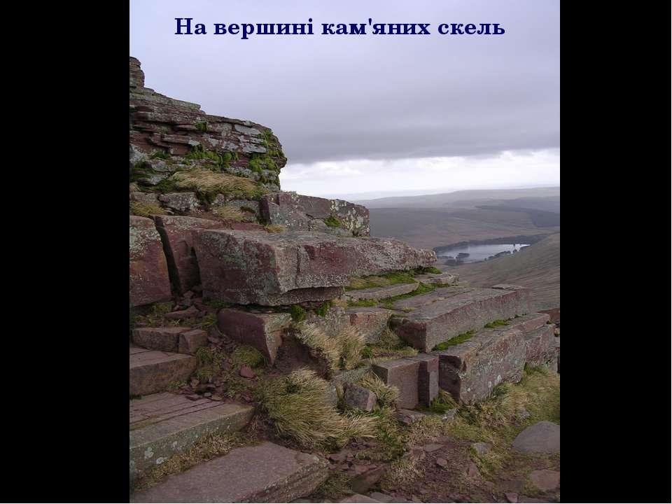 На вершині кам'яних скель