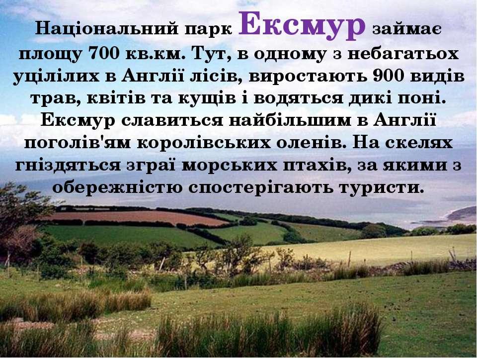 Національний парк Ексмур займає площу 700 кв.км. Тут, в одному з небагатьох у...