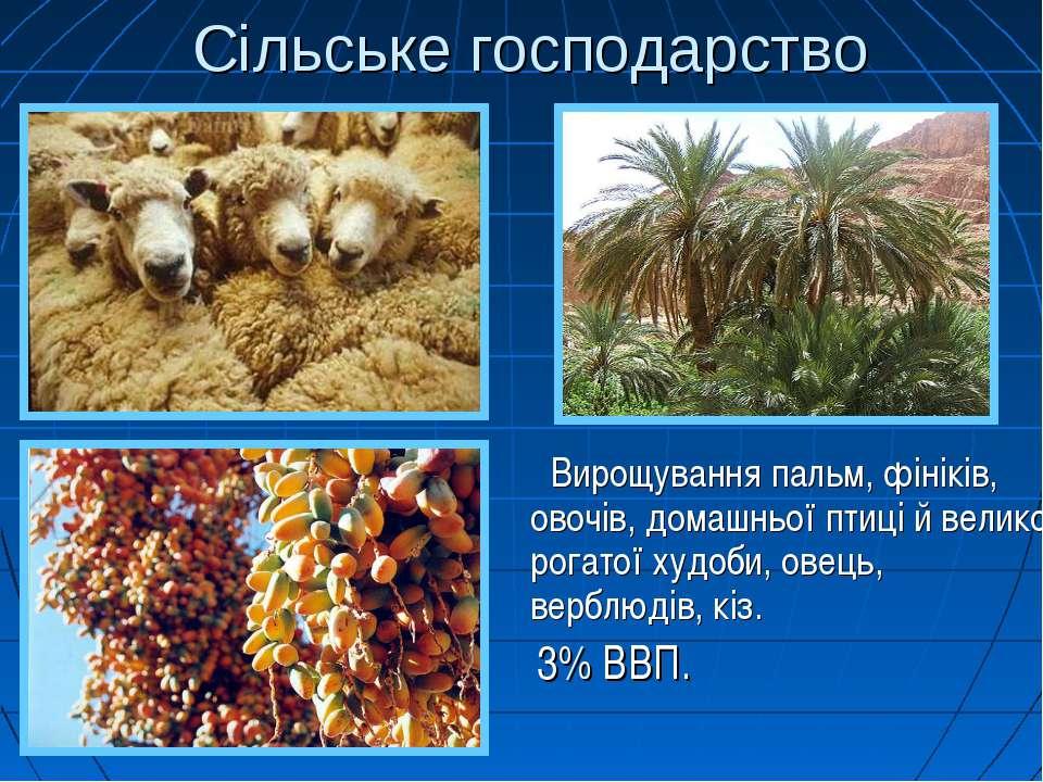 Сільське господарство Вирощування пальм, фініків, овочів, домашньої птиці й в...