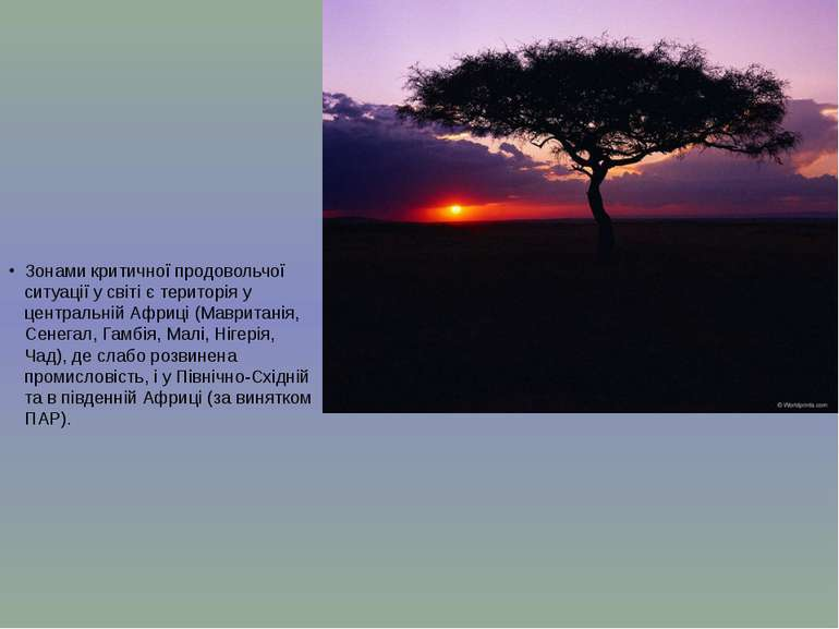 Зонами критичної продовольчої ситуації у світі є територія у центральній Афри...
