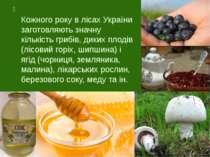 Кожного року в лісах України заготовляють значну кількість грибів, диких плод...