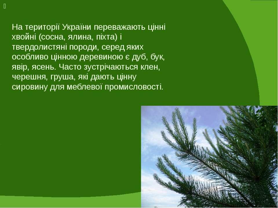 На території України переважають цінні хвойні (сосна, ялина, піхта) і твердол...
