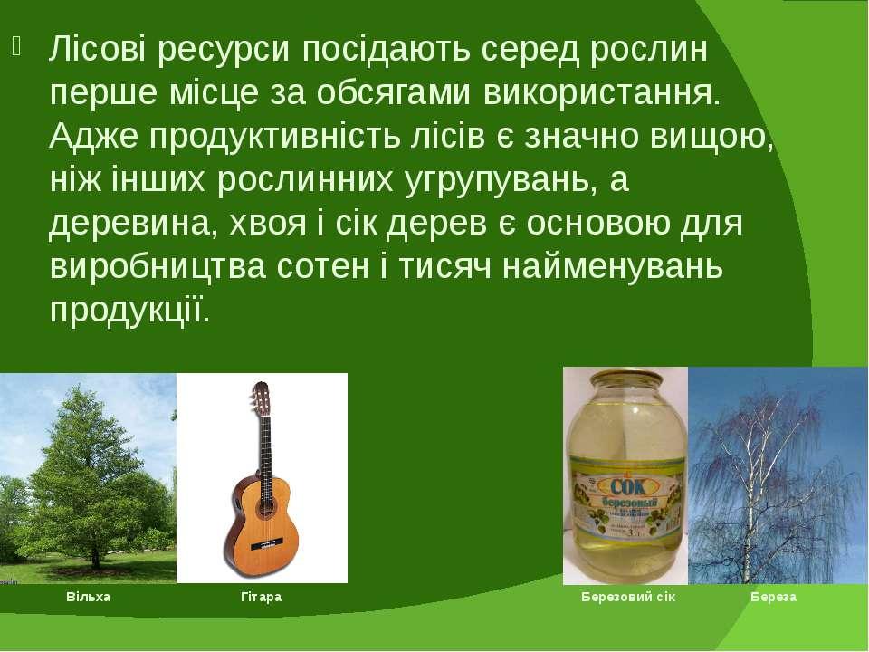 Лісові ресурси посідають серед рослин перше місце за обсягами використання. А...