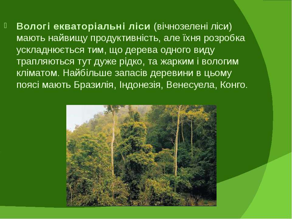 Вологі екваторіальні ліси (вічнозелені ліси) мають найвищу продуктивність, ал...