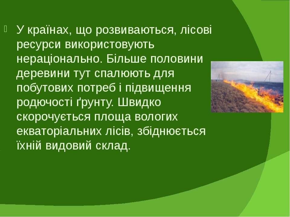 У країнах, що розвиваються, лісові ресурси використовують нераціонально. Біль...