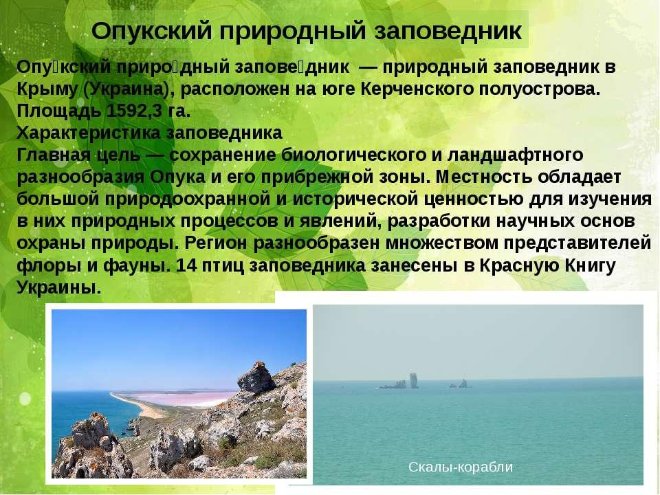 Опукский природный заповедник Опу кский приро дный запове дник — природный за...