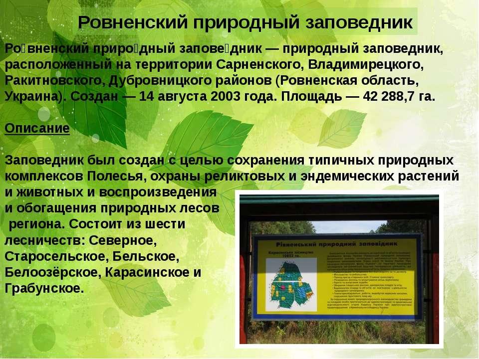 Ровненский природный заповедник Ро вненский приро дный запове дник — природны...