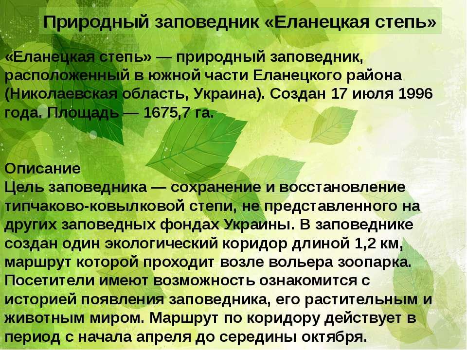 Природный заповедник «Еланецкая степь» «Еланецкая степь» — природный заповедн...