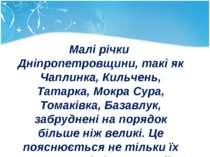Малі річки Дніпропетровщини, такі як Чаплинка, Кильчень, Татарка, Мокра Сура,...