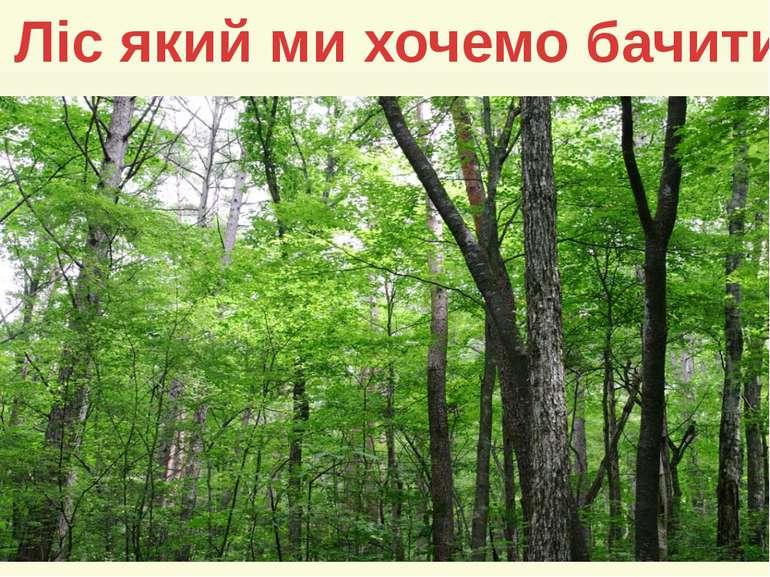 Ліс який ми хочемо бачити