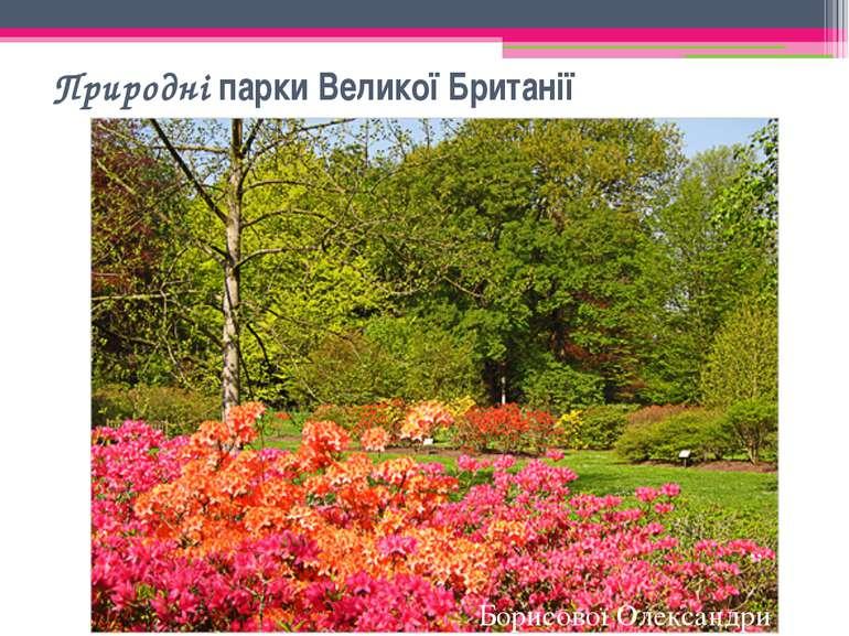 """Природні парки Великої Британії """" Борисової Олександри"""