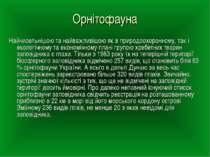 Орнітофауна Найчисельнішою та найважливішою як в природоохоронному, так і еко...