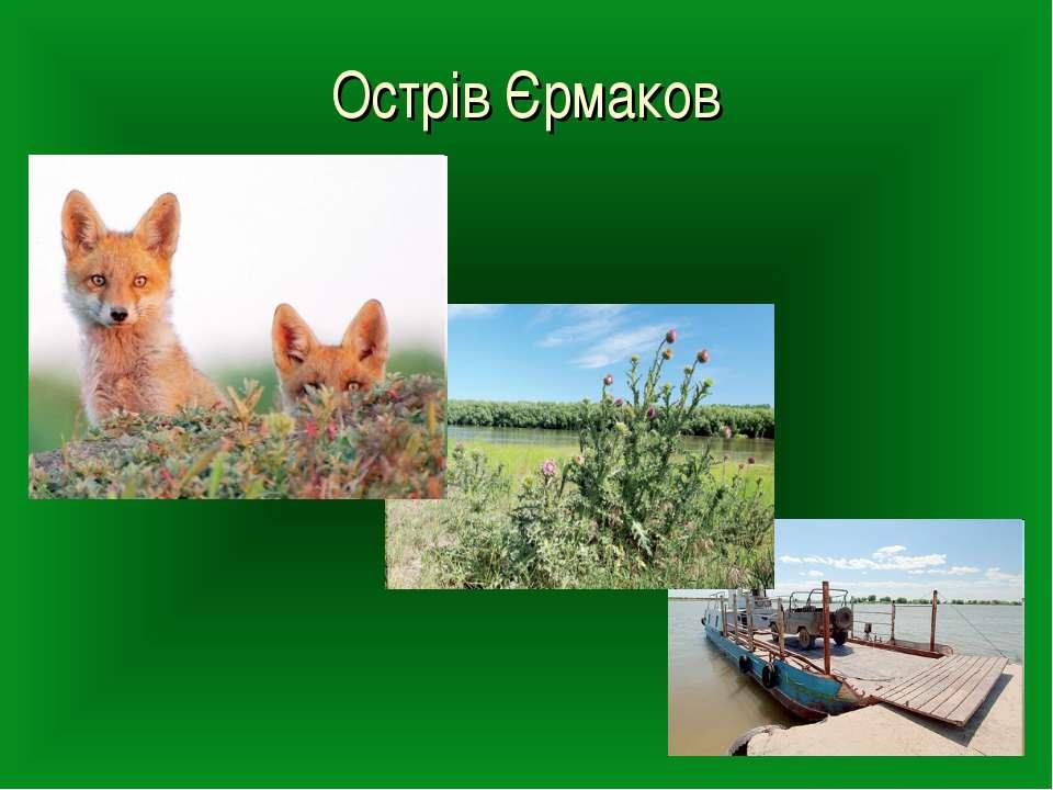 Острів Єрмаков