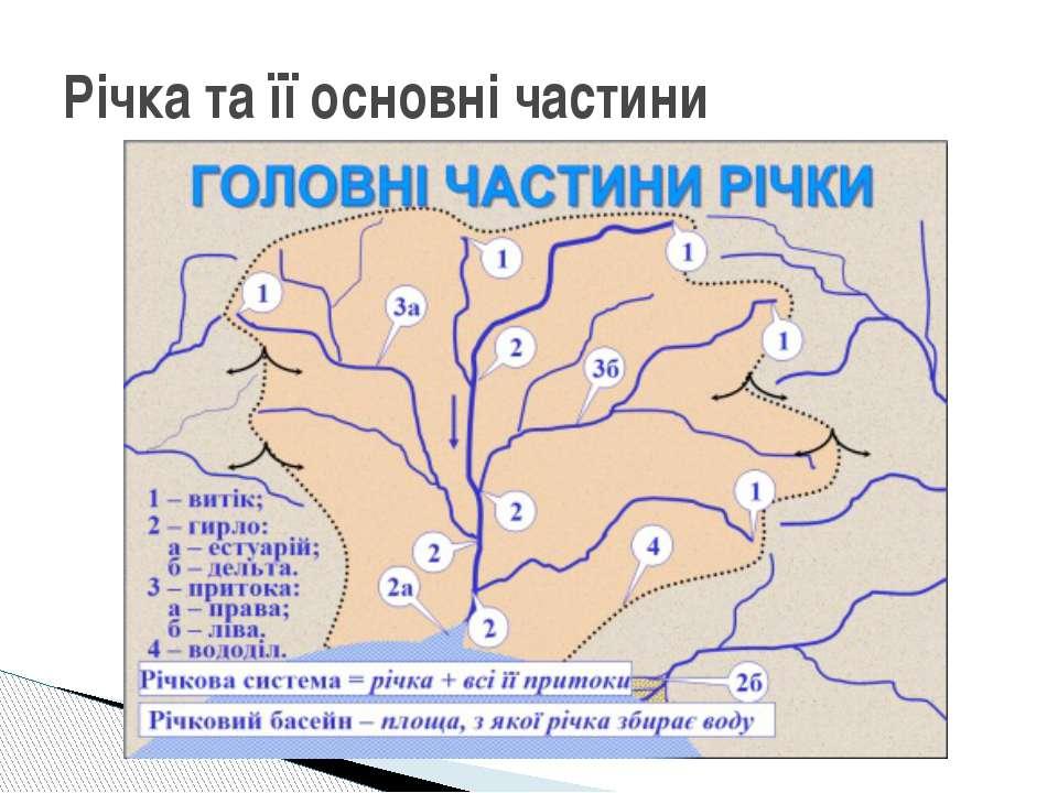 Річка та її основні частини