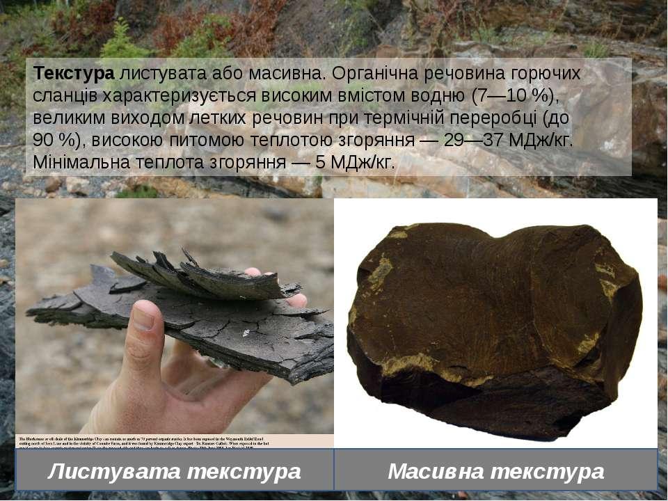 Текстура листувата або масивна. Органічна речовина горючих сланців характериз...