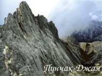 Пунчак-Джая