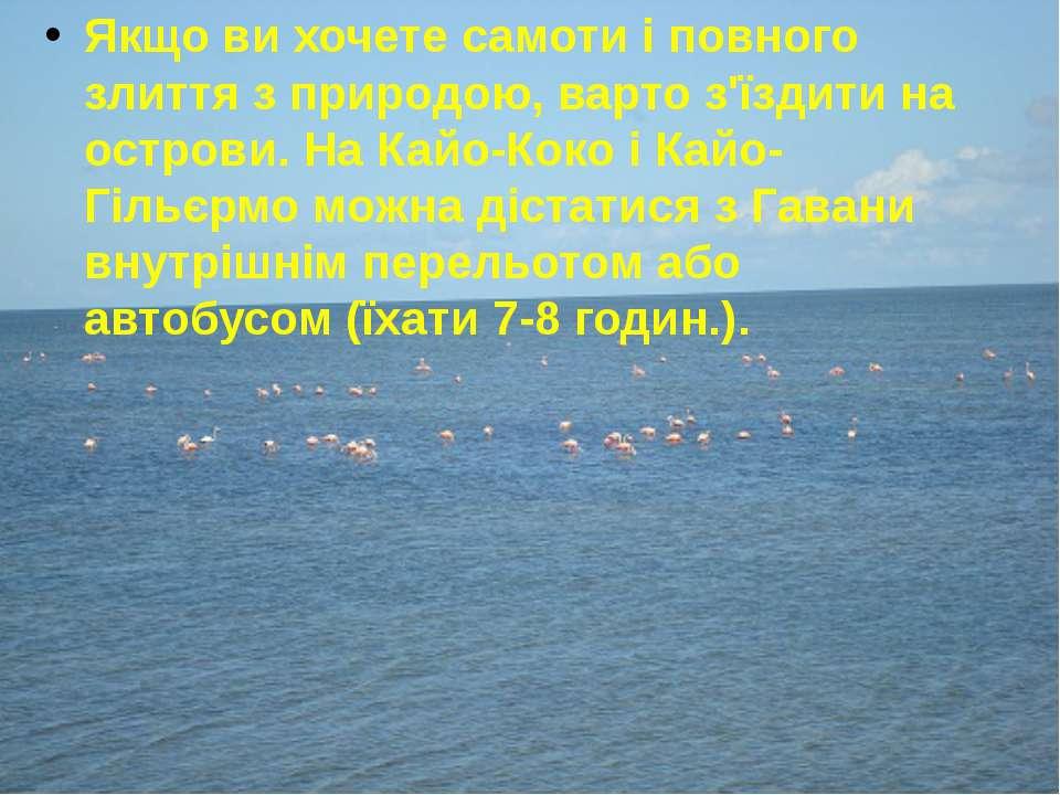 Якщо ви хочете самоти і повного злиття з природою, варто з'їздити на острови....