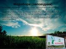 Медобори (заповідник) Запові дник «Медобо ри»—природоохоронна територіяв м...