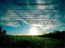 Ґорґани (заповідник) «Ґорґа ни»—природний заповідниквУкраїнських Карпатах...