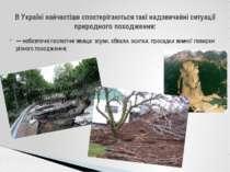— небезпечні геологічні явища: зсуви, обвали, осипки, просадки земної поверхн...