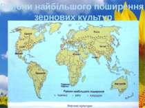 Райони найбільшого поширення зернових культур