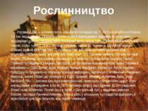 Рослинництво — головна галузь сільського господарства. У світі культивуються ...