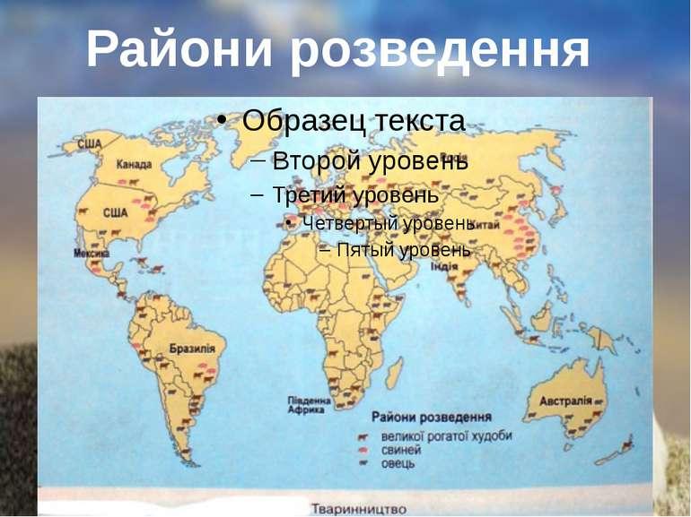 Райони розведення