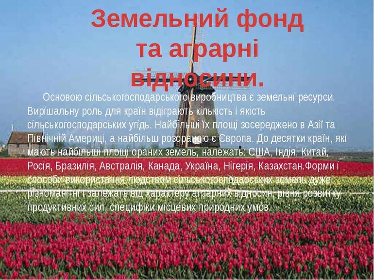 Основою сільськогосподарського виробництва є земельні ресурси. Вирішальну рол...