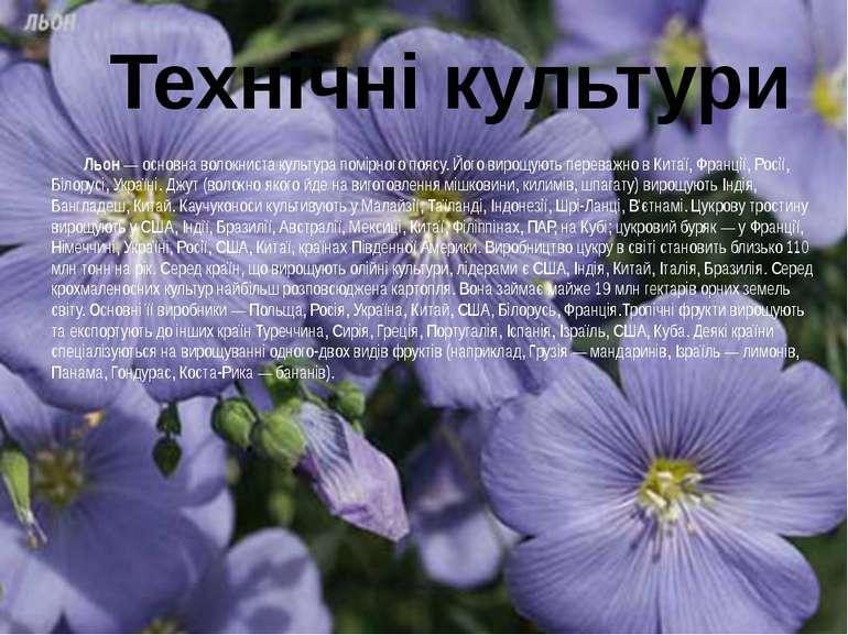 Льон— основна волокниста культура помірного поясу. Його вирощують переважно ...