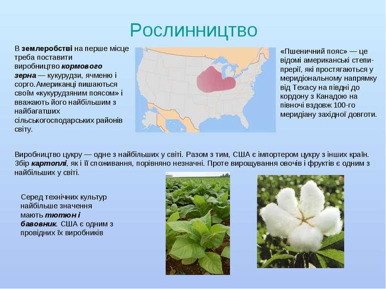 Рослинництво Вземлеробствіна перше місце треба поставити виробництвокормов...