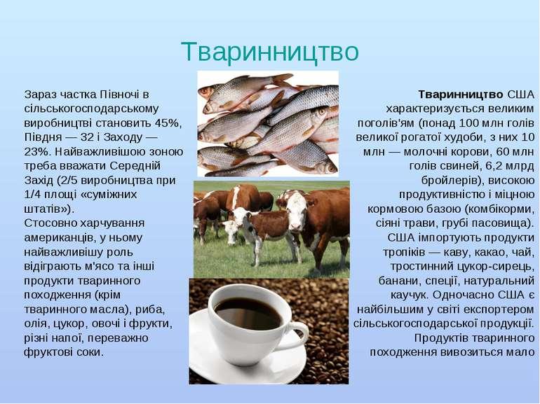 Тваринництво ТваринництвоСША характеризується великим поголів'ям (понад 100 ...