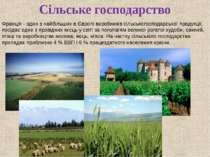Сільське господарство Франція - один з найбільших в Європі виробників сільськ...