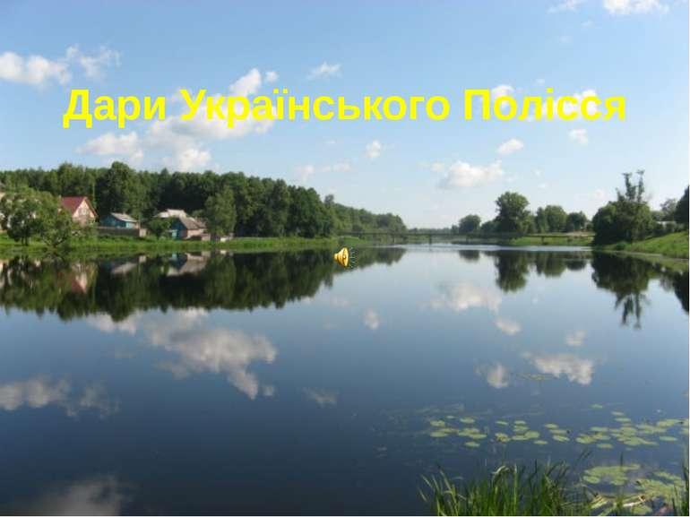 Дари Українського Полісся